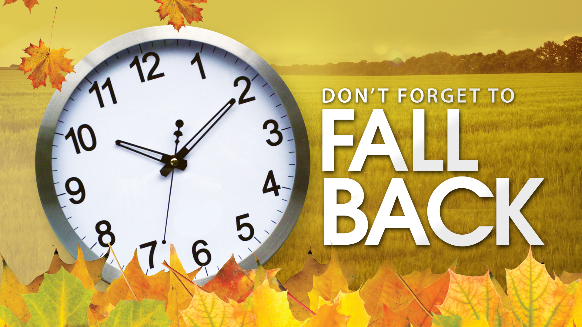 Daylight Savings Time is scheduled for this Sunday, November 2nd ...